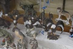 Götz Vögel