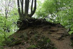 Erosion seit 1930