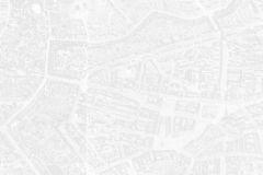 Mit dem Ausschnitt der Delkeskampschen Karte wollte ich einen Eindruck von den historischen Gärten vermitteln.. Allerdings verlangt das Institut für Stadtgeschichte dafür 120 € im Jahr