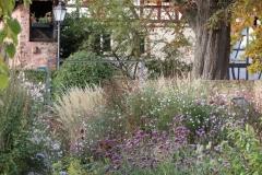 12-Garten-Koelsch-IMG_3481_cr_800