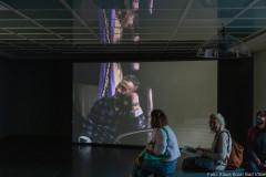 Intelligenz der Pflanzen Kunstverein Ffm